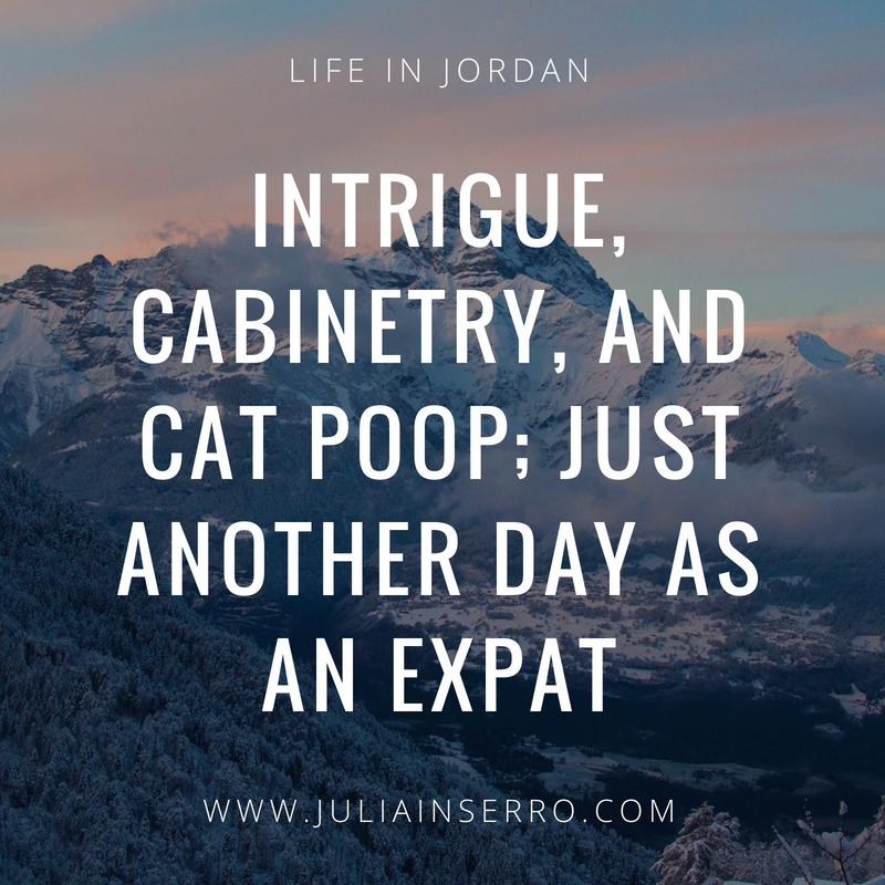 Intrigue, Cabinetry, and Cat Poop; Just Another Day as an Expat.png