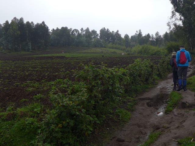 rwanda (14).jpg