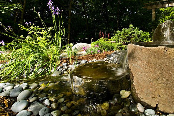 edina-water-woods.jpg