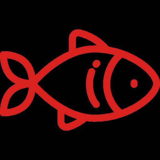 fish (2).png