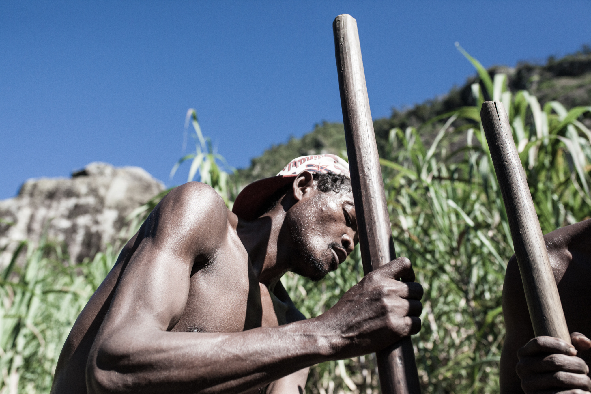 Under a Scorching Sun the Team Painstakingly Pulp the Sugarcane Mix
