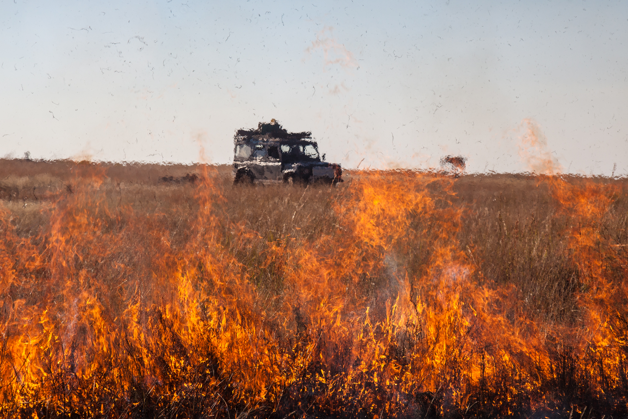 The Grasslands Are Burnt in the Dry Season to Encourage Green Shoots that Cattle Can Feed on