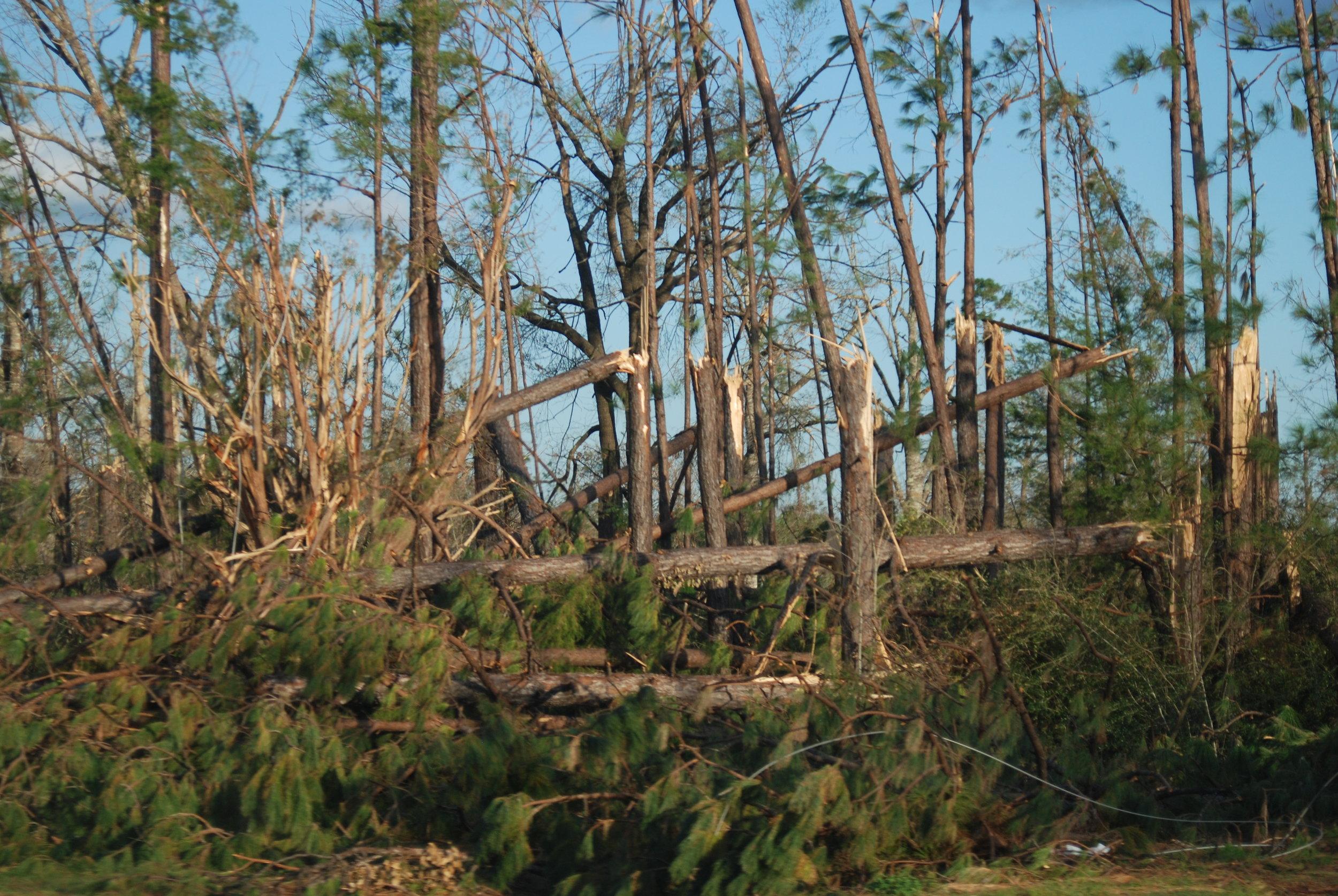 Hurricane Michael Trip_16.JPG