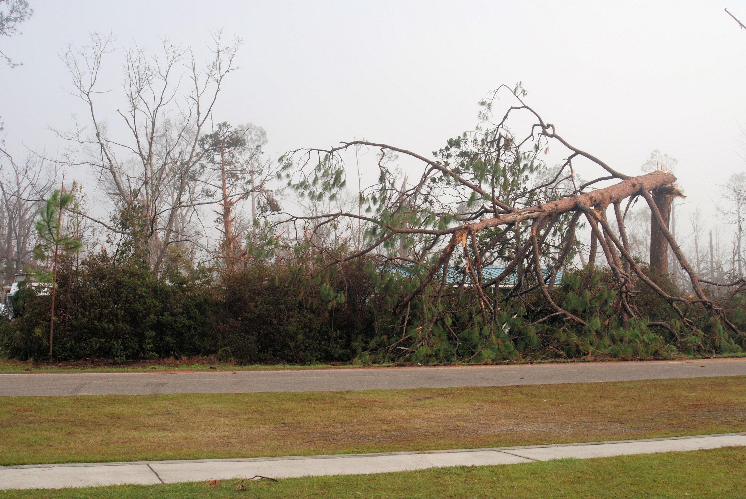 Hurricane Michael Trip_25.JPG