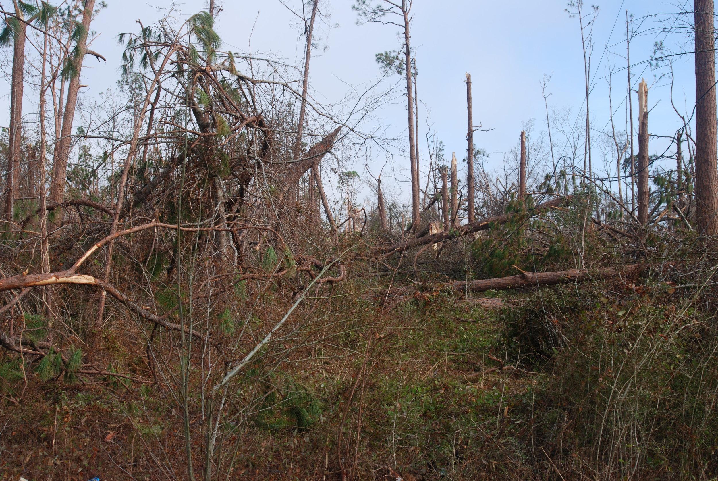 Hurricane Michael Trip_53.JPG