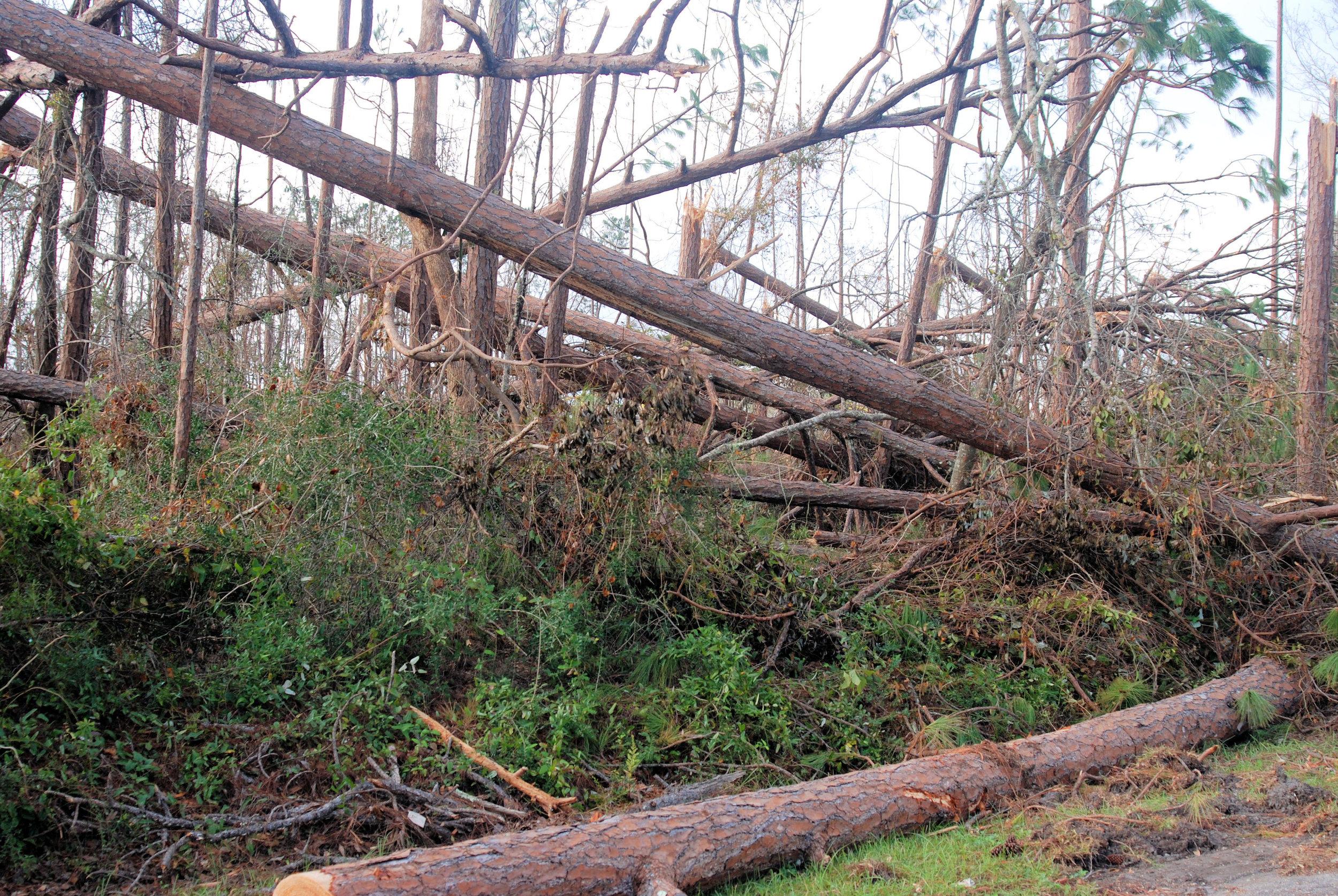 Hurricane Michael Trip_54.JPG