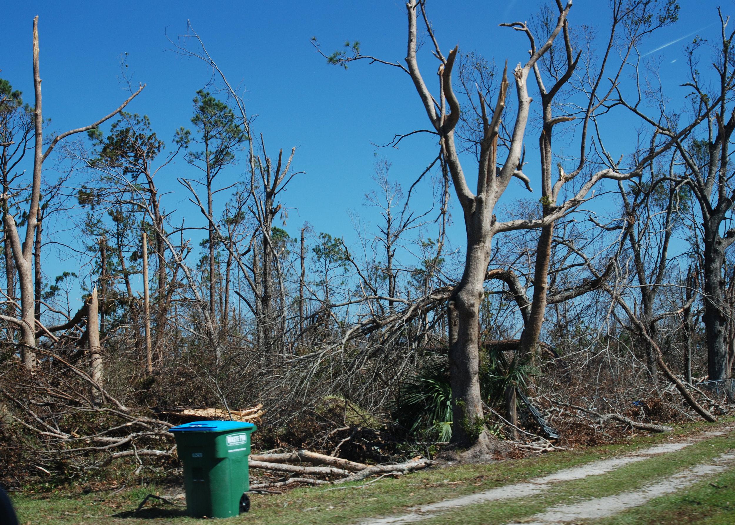 Hurricane Michael Trip_113.JPG
