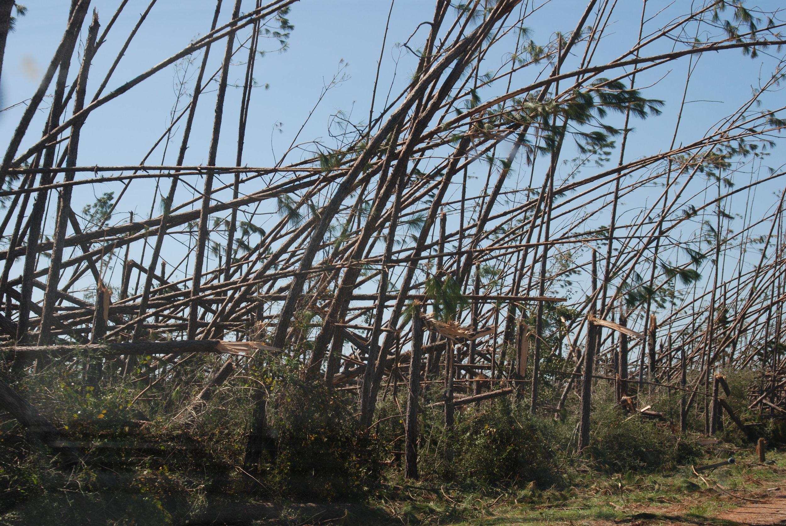 Hurricane Michael Trip_120.JPG