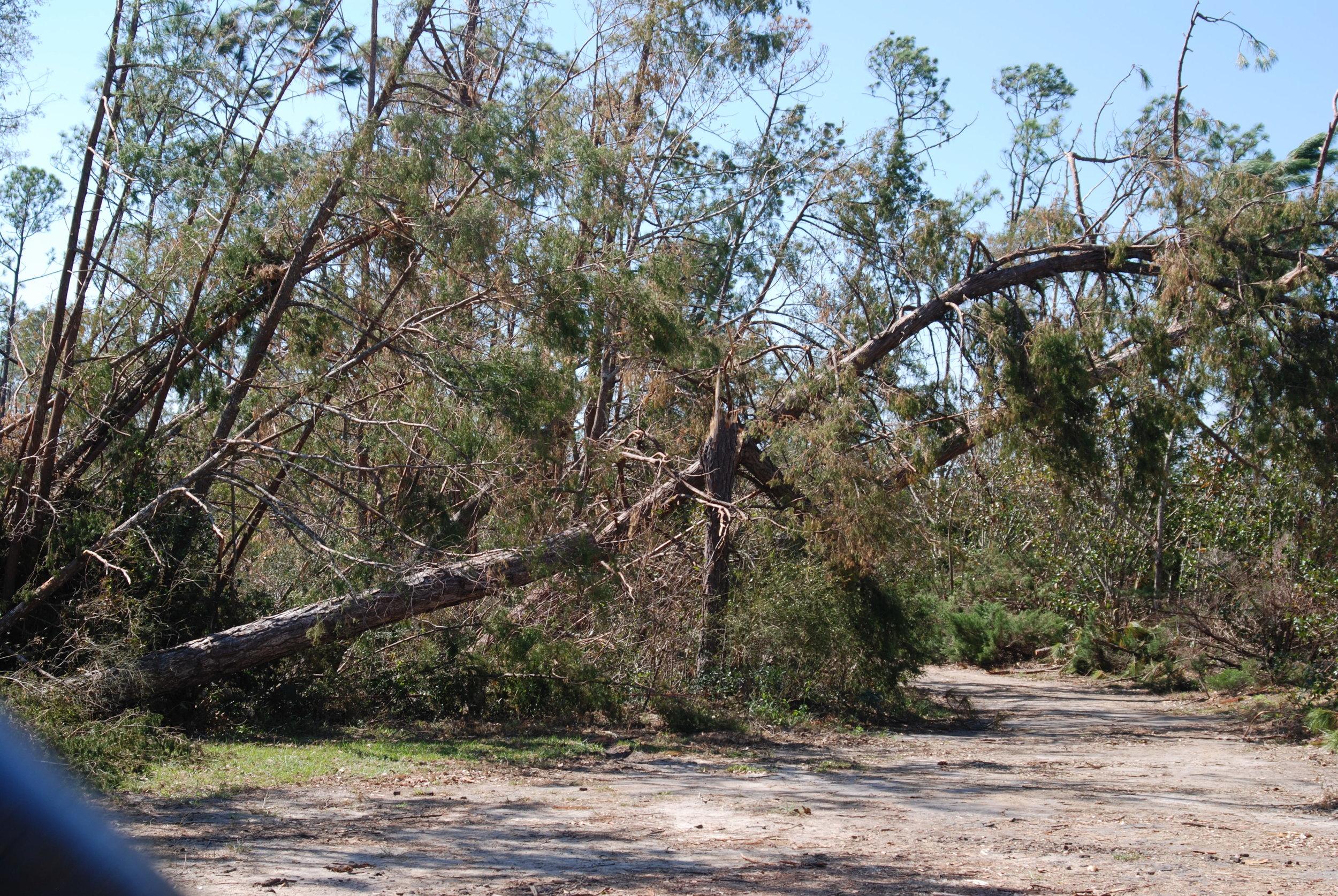 Hurricane Michael Trip_124.JPG