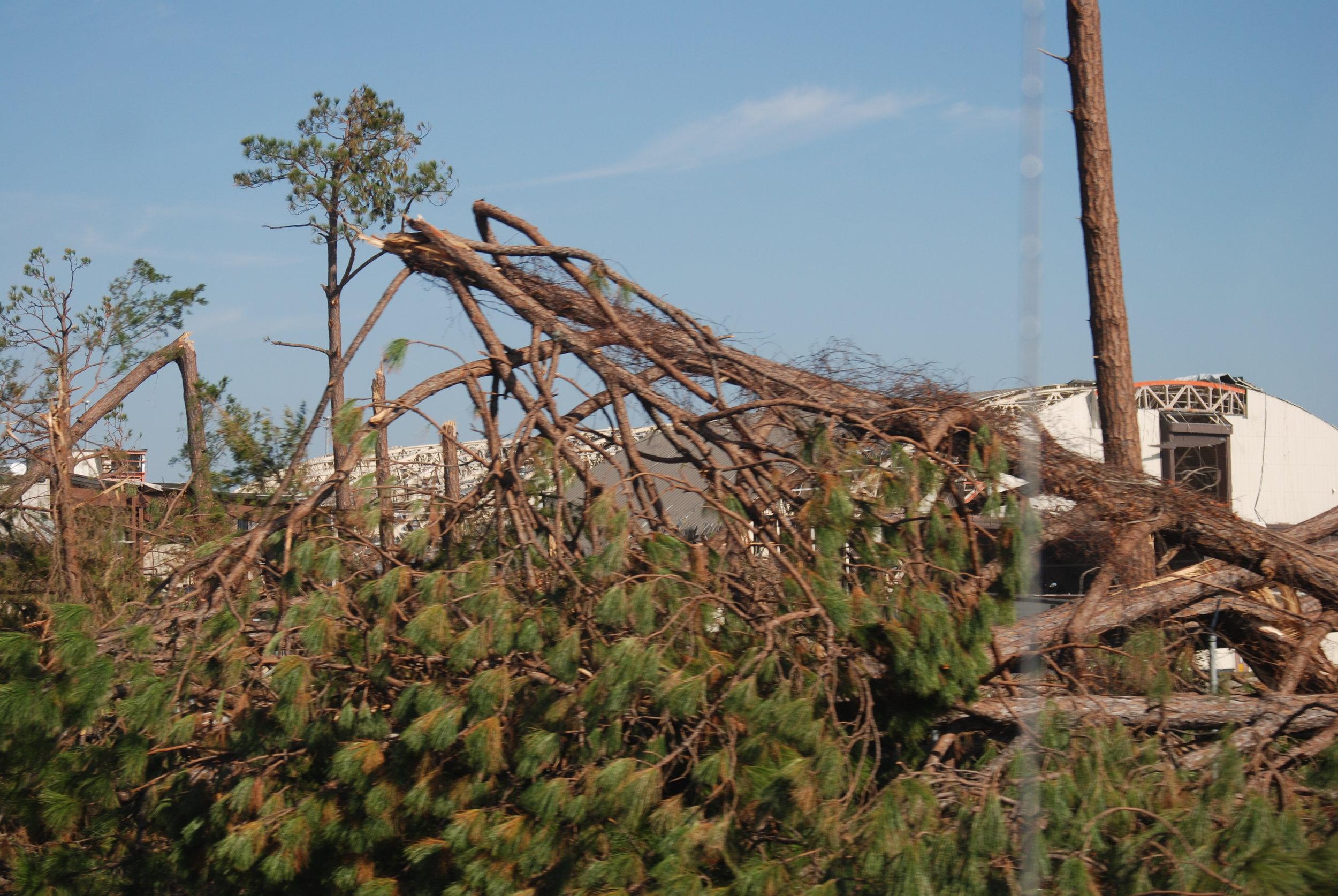 Hurricane Michael Trip_182.JPG