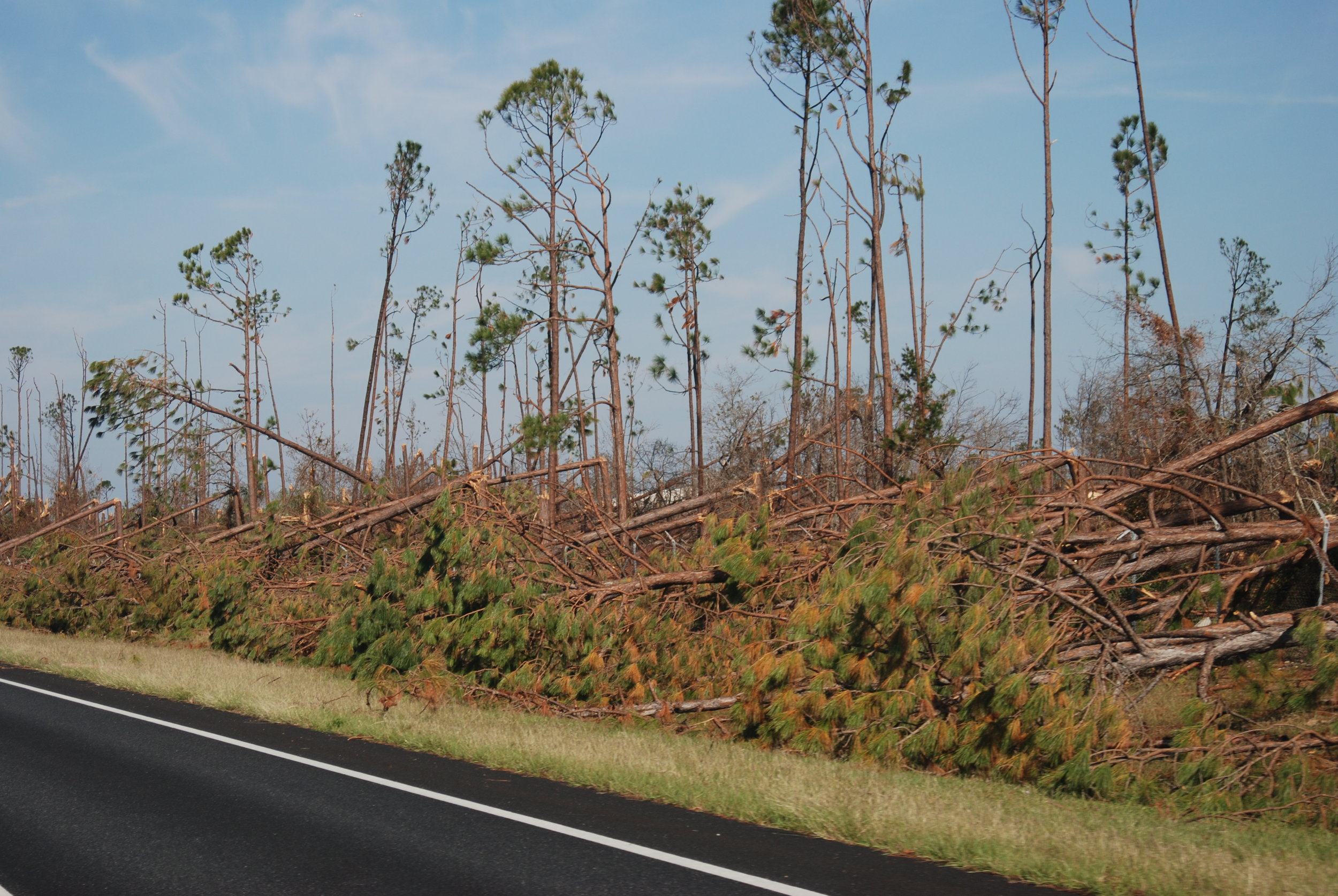 Hurricane Michael Trip_199.JPG