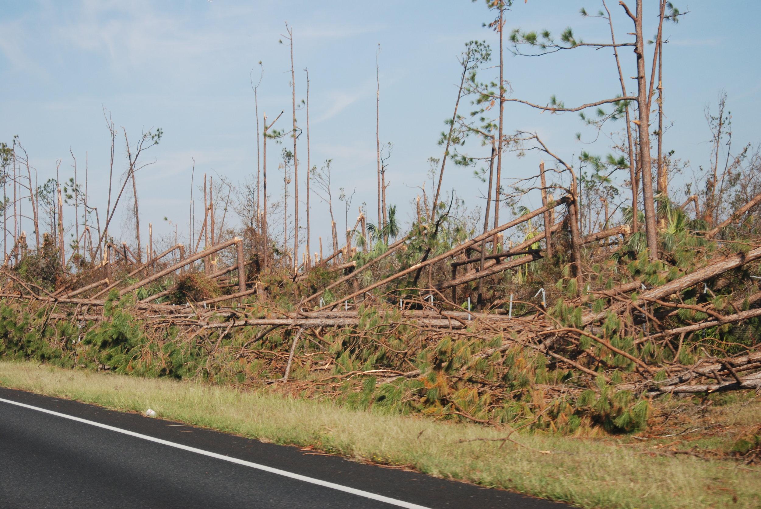 Hurricane Michael Trip_200.JPG