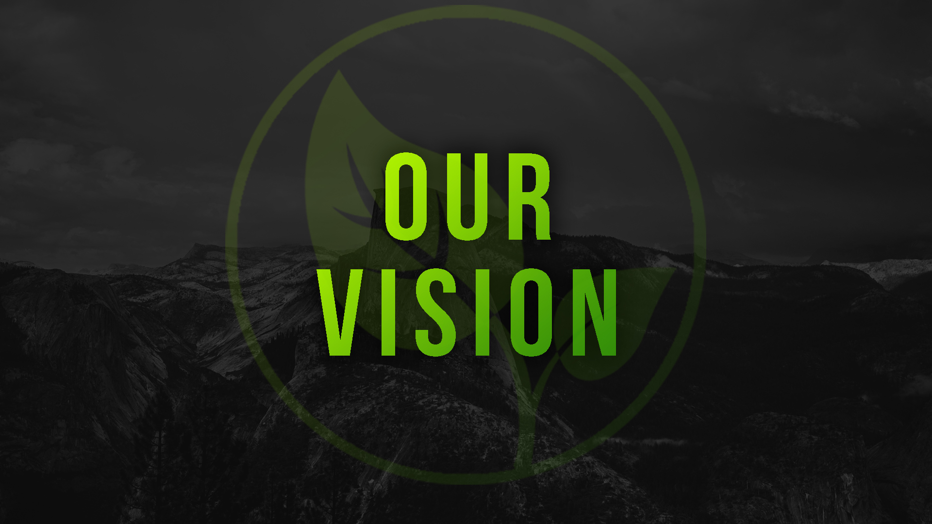 ourvision.jpg