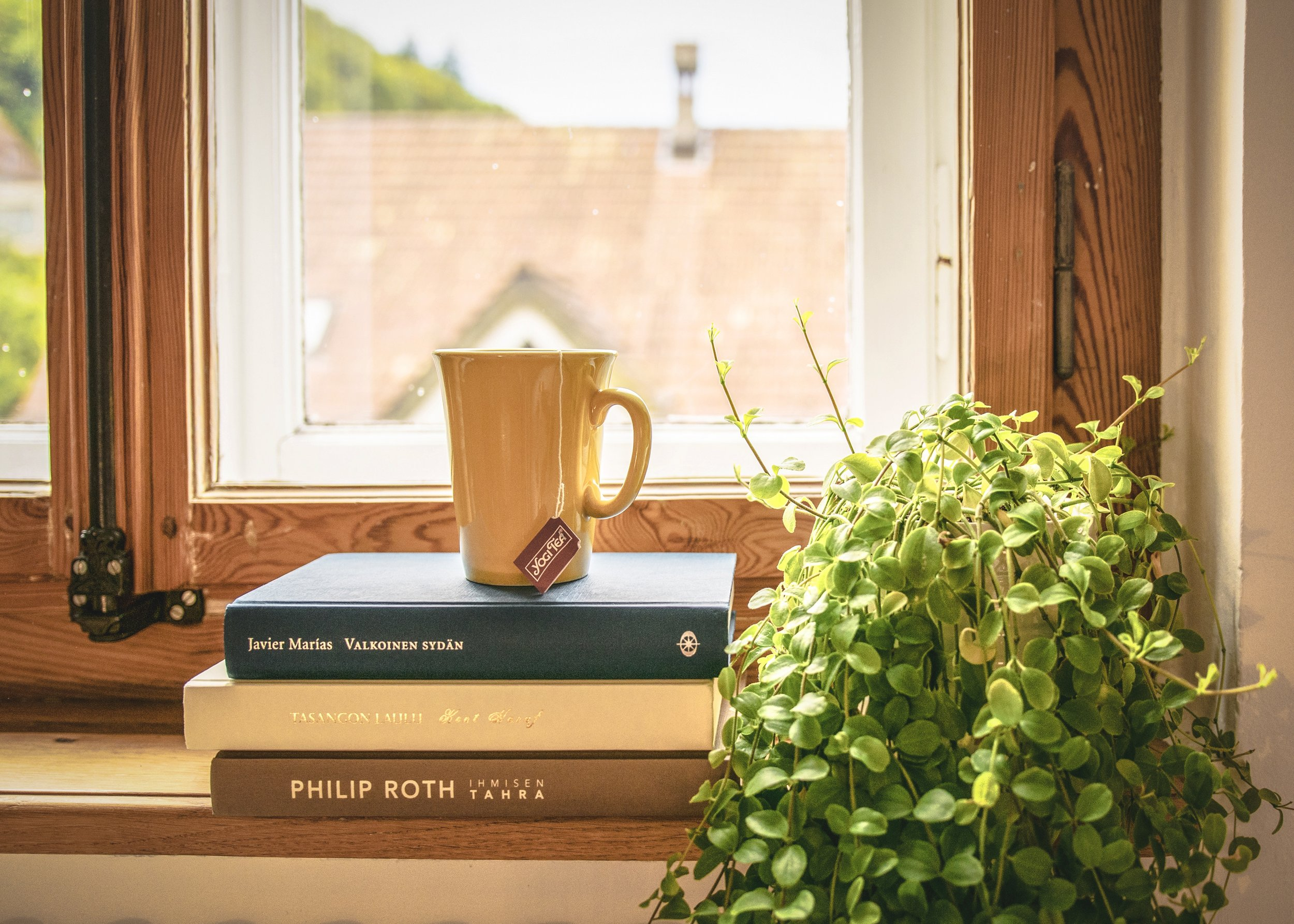 Book and Windowsill.jpg