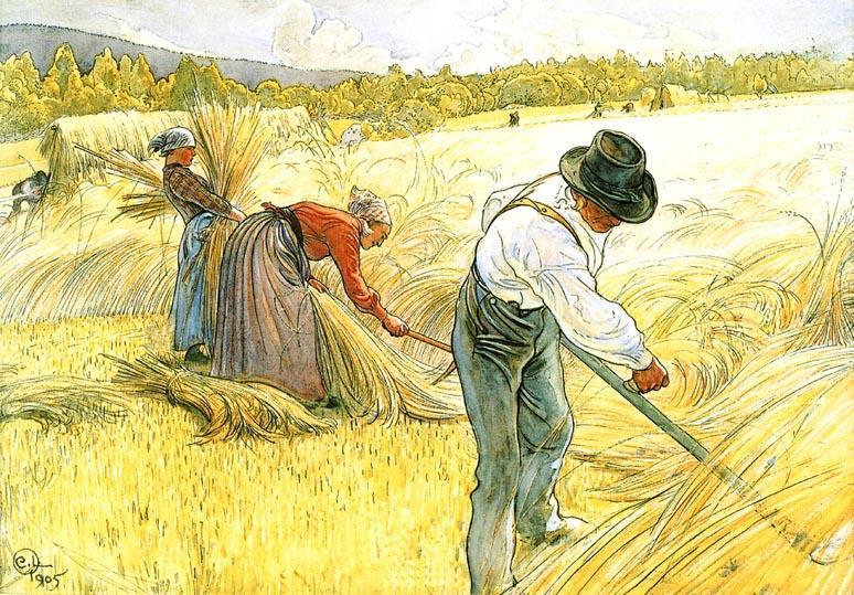 Harvesting-The-Rye.JPG