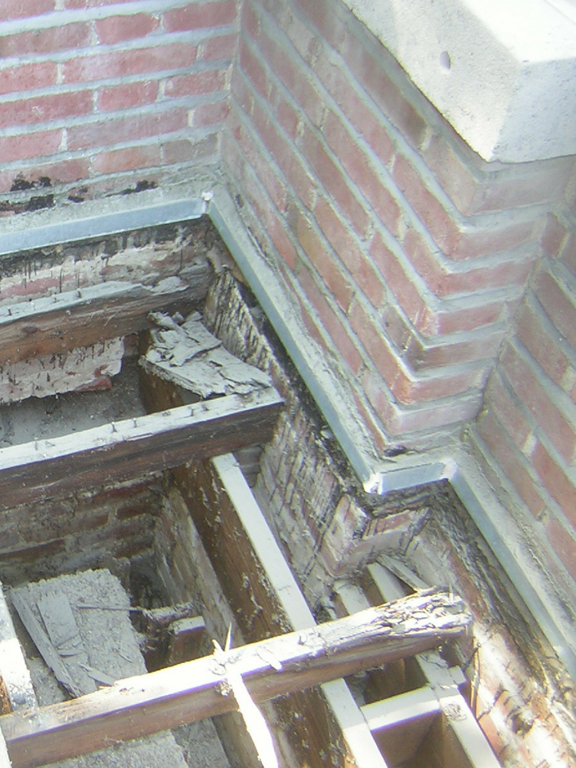 garden roof exposed - featured.png