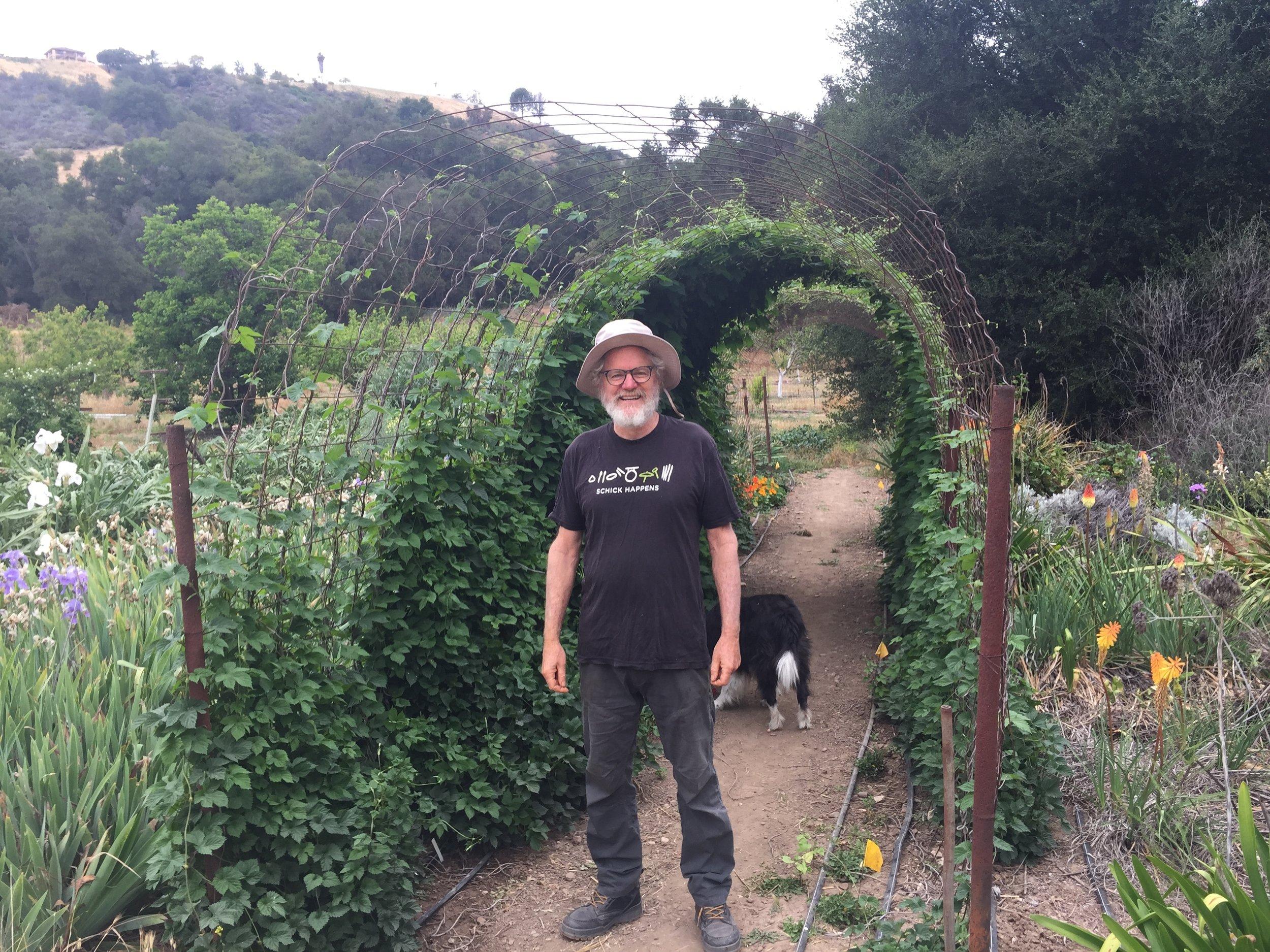 Adam Tolmach standing in his family garden beneath his brother's hop arbor.