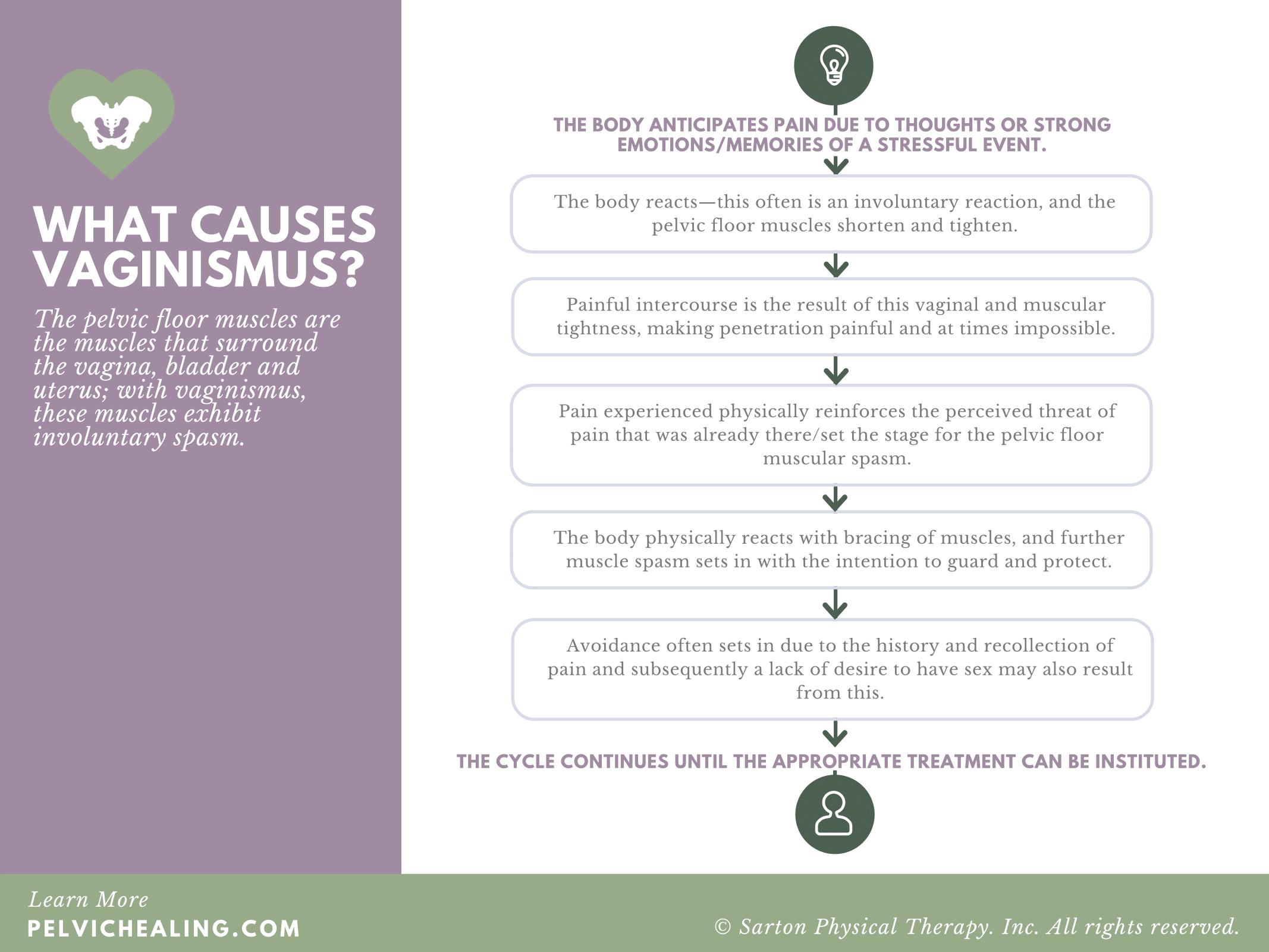 Vaginismus Causes & Treatment Flowchart.png