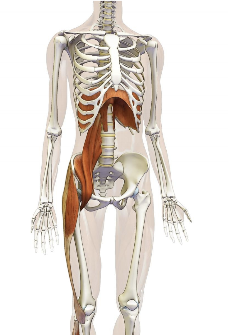 Breathing problem and pelvic floor physical therapy