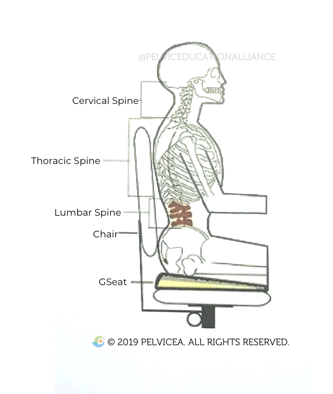 """Spending prolonged time in one position (i.e. SITTING on a long flight, long car ride, sitting day in and out at work in 1 position) can contribute to """"unhappy nerves,"""""""