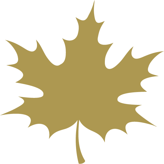 maple investments