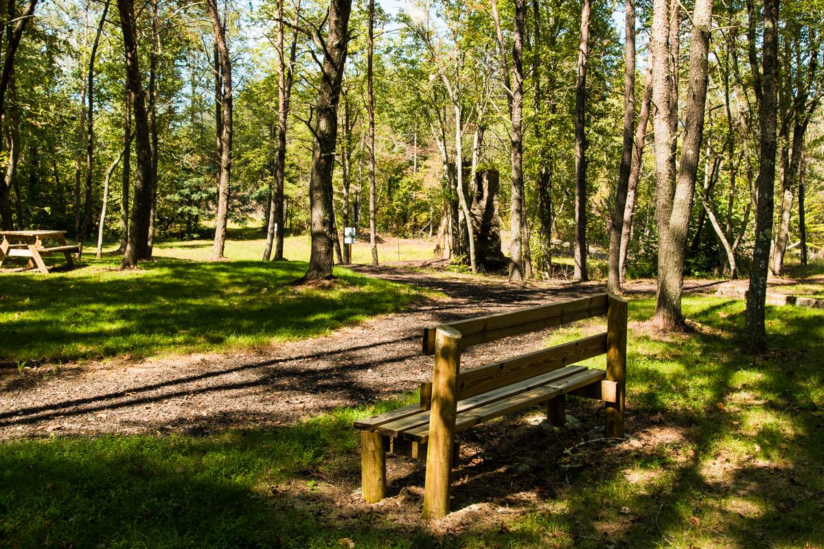 Park photos-4.jpg