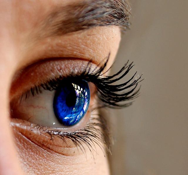 eyes-2843185_640.jpg