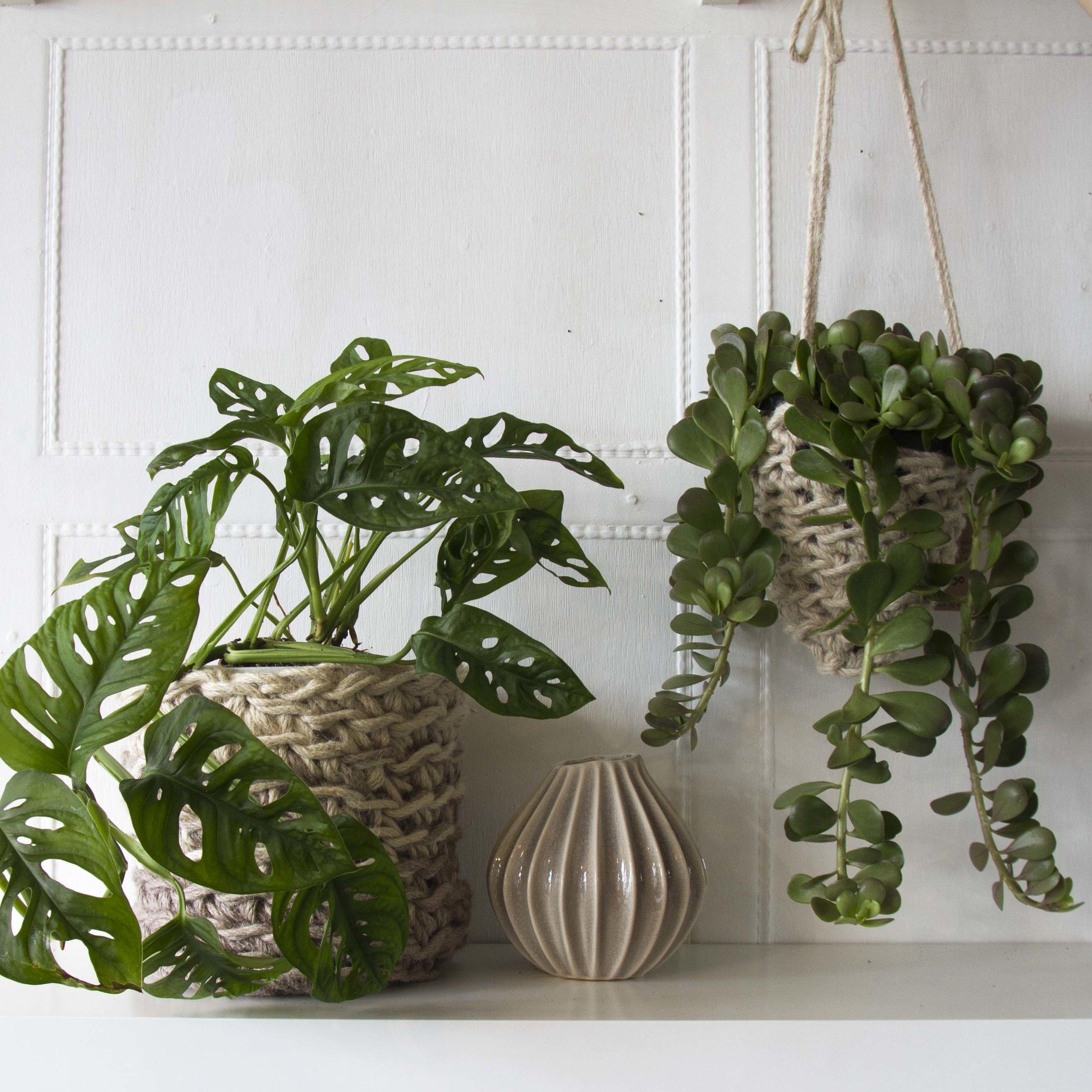 Cocoon&Me Crochet pots