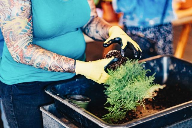 Plant Workshops — The Victorian Atlanta