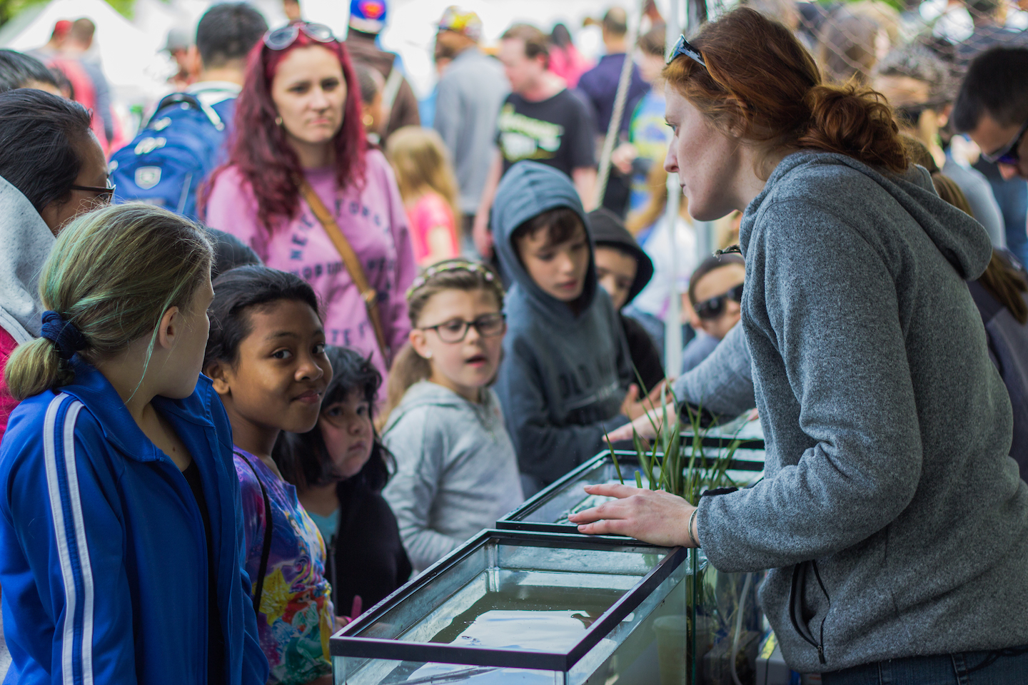 The Partnership for the Delaware Estuary in action at the 2015 Science Fair, facilitating contact between students, families and river-dwelling plants and animals.