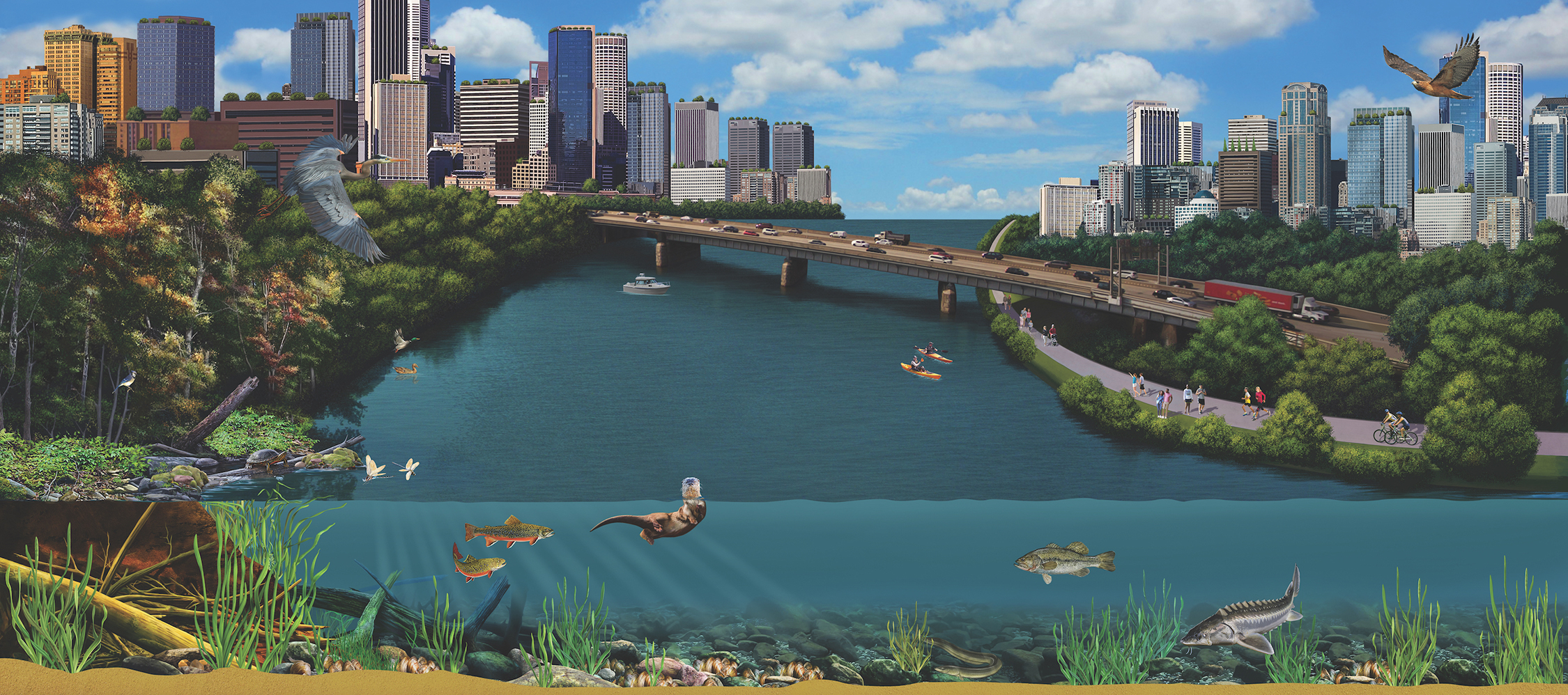 Murals at the Mussel Hatchery illustrate healthy urban watersheds, full of creatures and plants large and small.
