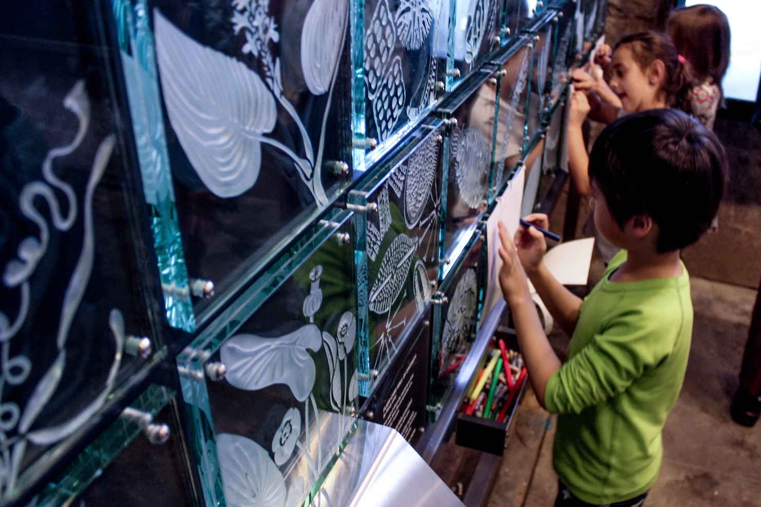 Glass tiles with sandblasted images of native animals, micro-organisms and plants provide a textural surface for students to take rubbings with paper and crayons in the Mussel Hatchery.