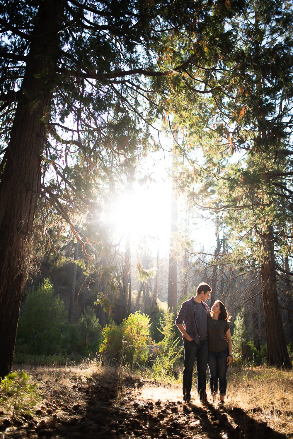 los-angeles-national-forest-engagement-photography-couple-kissing-backlight-trees-sunset