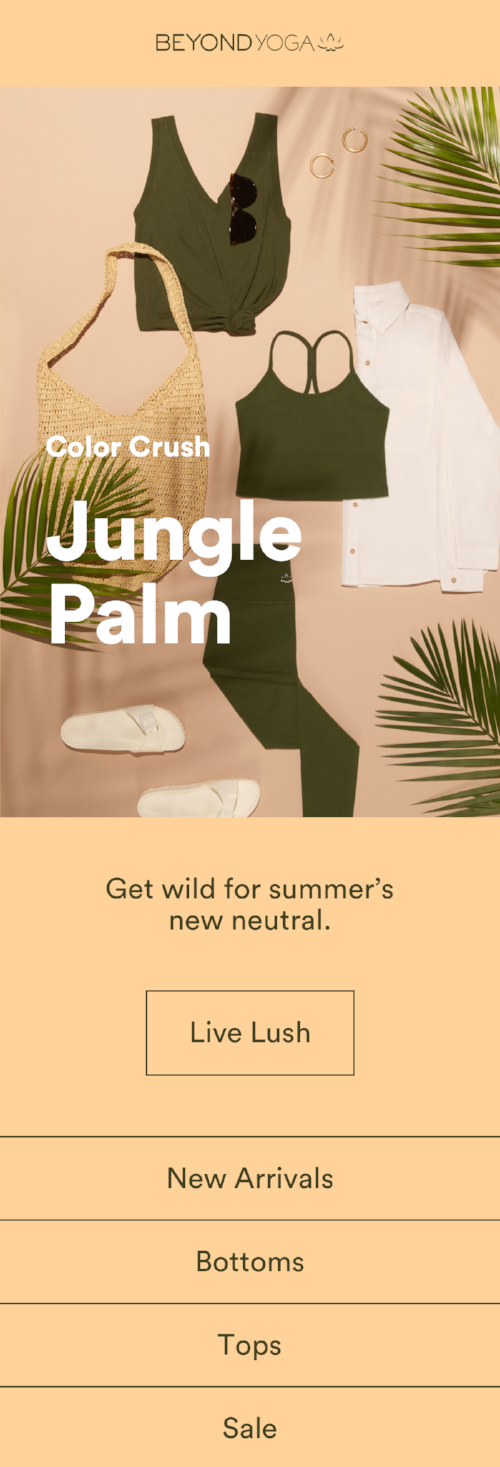 042818_CC_JUNGLE_PALM_EMAIL.png