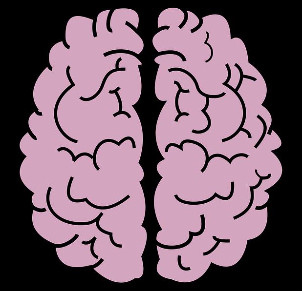 brain-2970173_960_720.png