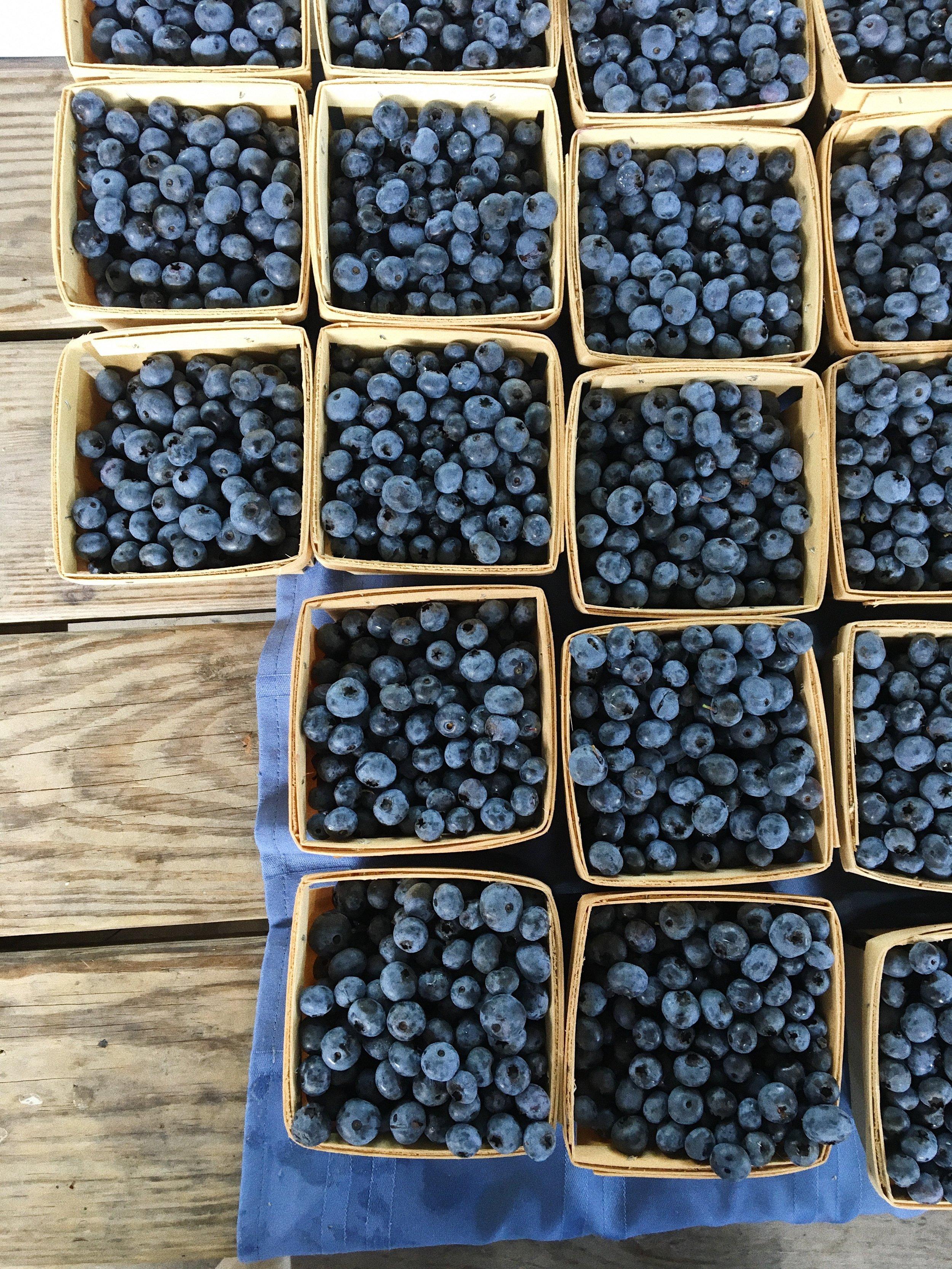 Bluebs- Ithaca Farmers Market