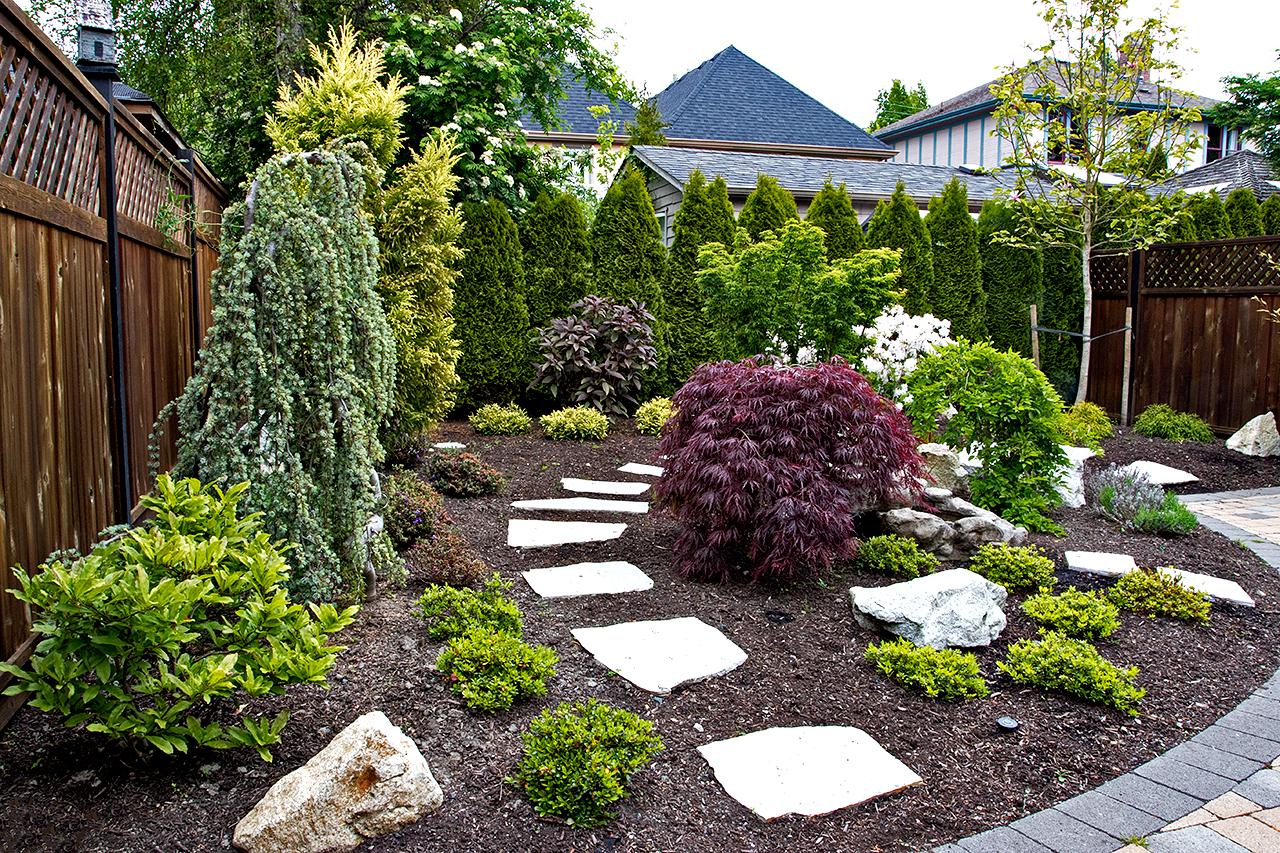 Mustang-Landscape-Garden-Design-Victoria-BC-Trees-Shrubbery.jpg