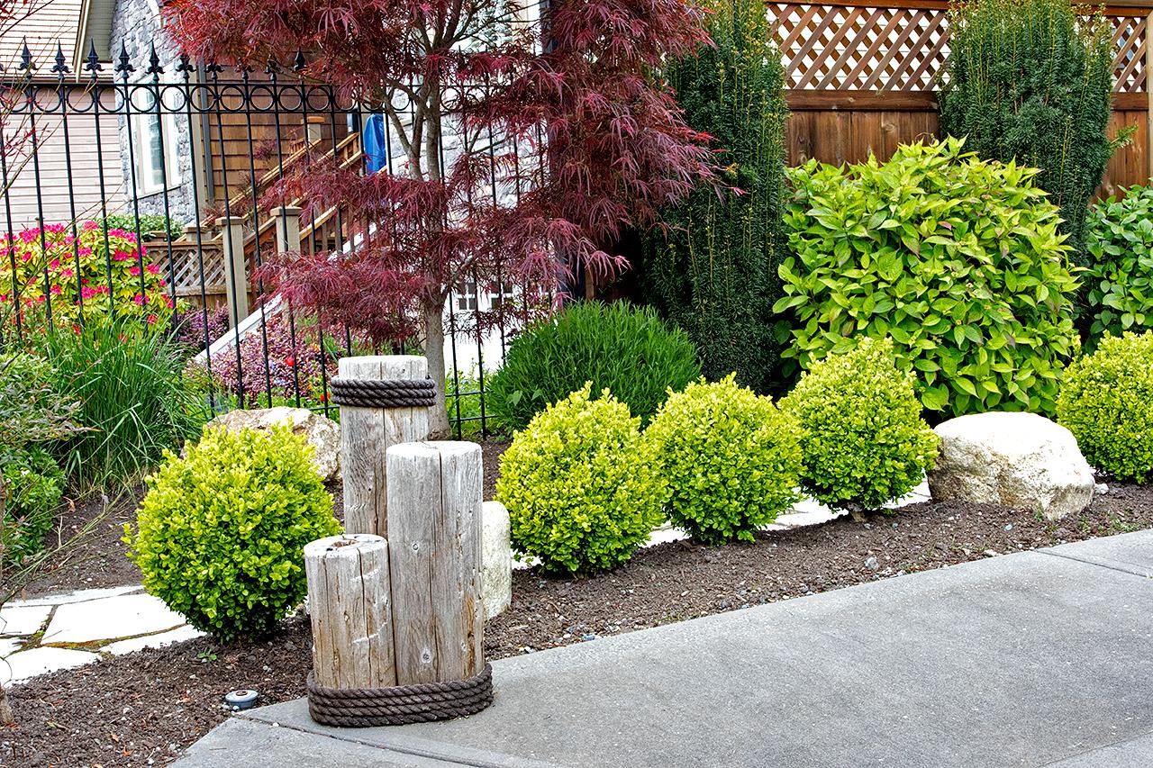 Mustang-Landscape-Garden-Design-Victoria-BC-Trees-Shrubs-Driftwood-.jpg