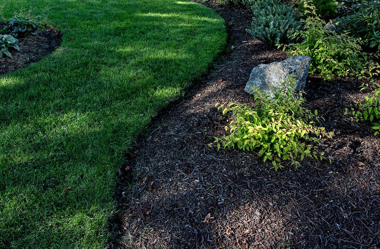 charming-simplicity-MustangLandscape-Victoria-BC-garden-lush-lawn.jpg