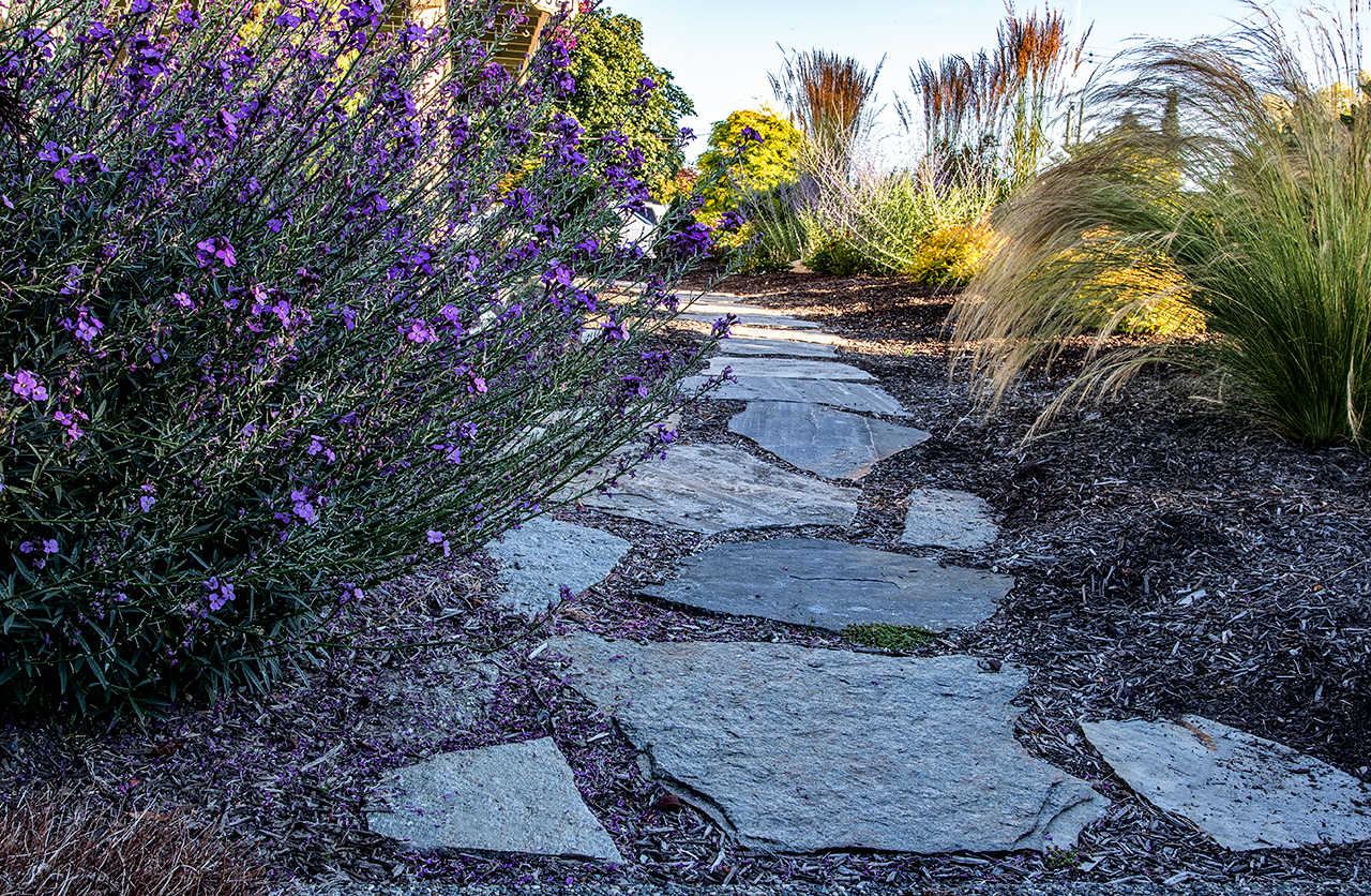 Beachside-Perennials-grasses--MustangLandscape-Victoria-BC-garden-rock-path.jpg