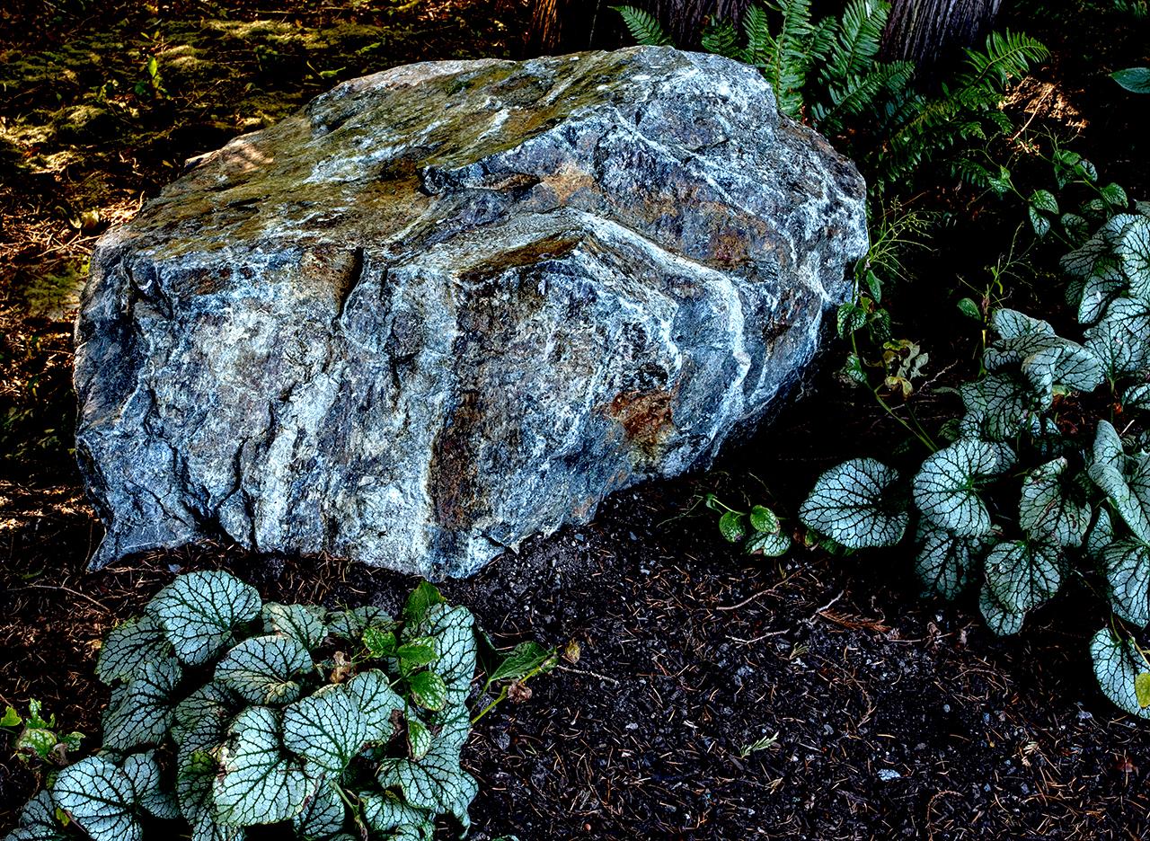 Woodland garden-MustangLandscape-Victoria-BC-garden-rock.jpg