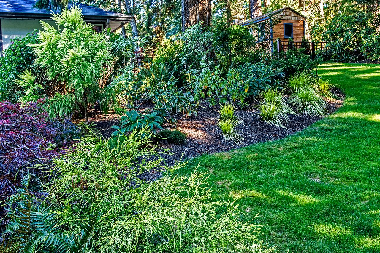 Woodland garden-MustangLandscape-Victoria-BC-garden-wood-shed.jpg