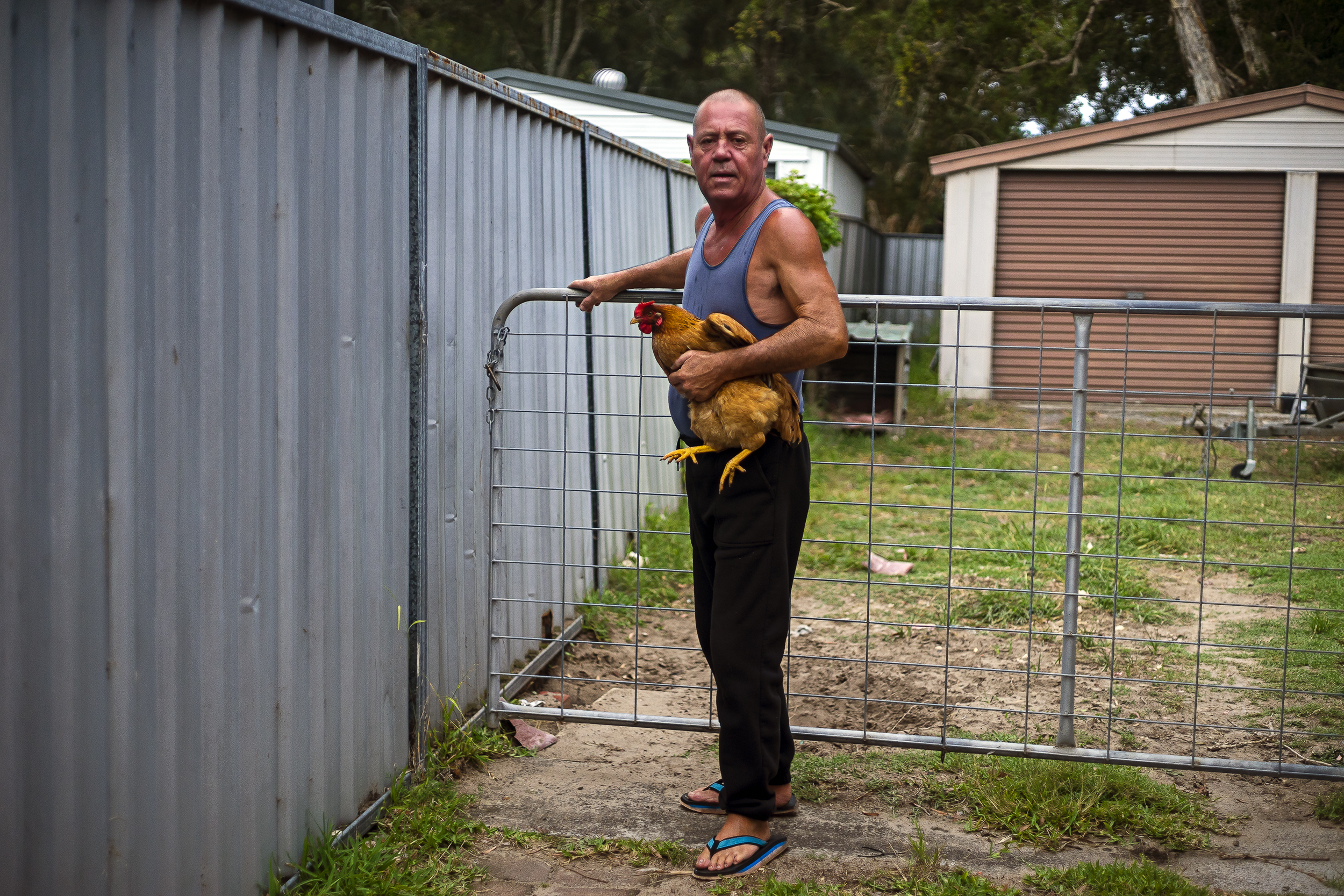 006_didi-s_gilson_australian_street_photography_candid_chicken_chook_gate_thongs_rural_portstephens_2018.jpg