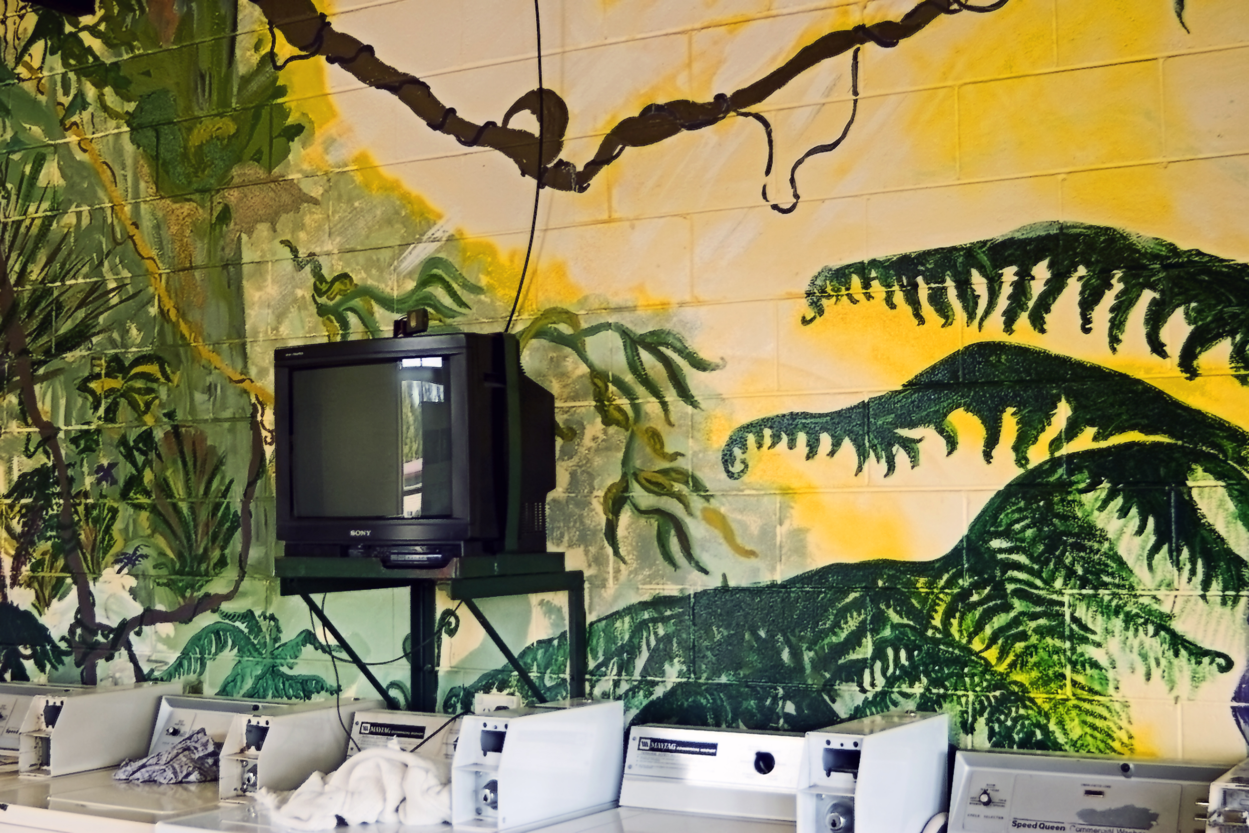 016_didi-s_gilson_australian_street_photography_laundromat_mural_tv_colour_washers_2006.jpg