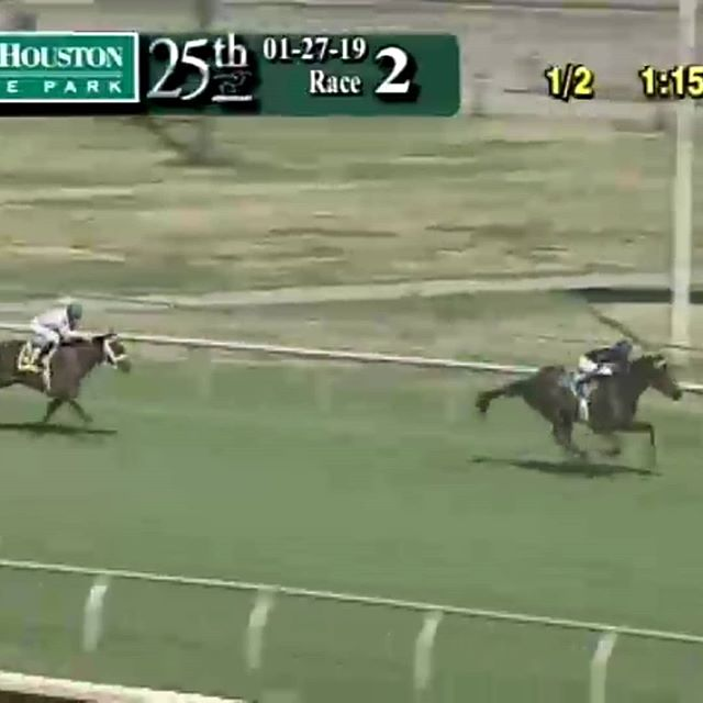It's been a long five month road back to the races but Botswana(Graydar) came back in romping fashioning to take the second race at Sam Houston today!  Couldn't be happier!!