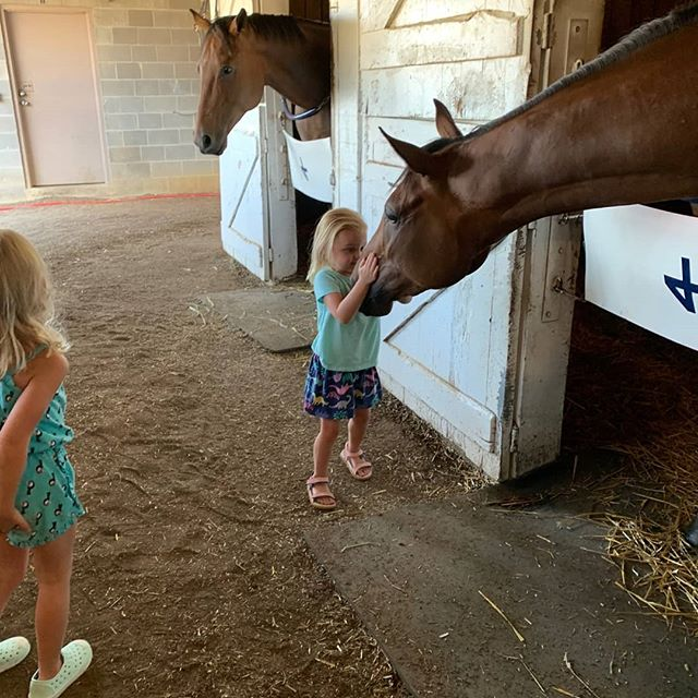 Our 2yo Conveyance filly Gretchen getting some love from a couple visitors today!