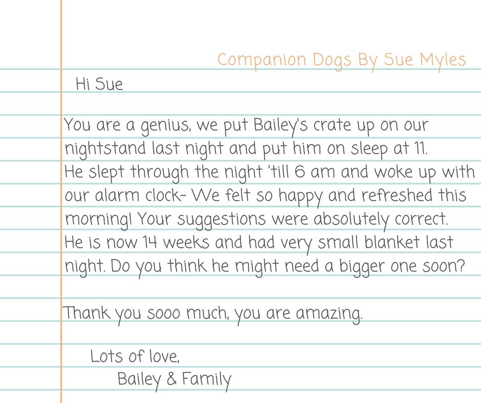 Dear Dr. Sue.png