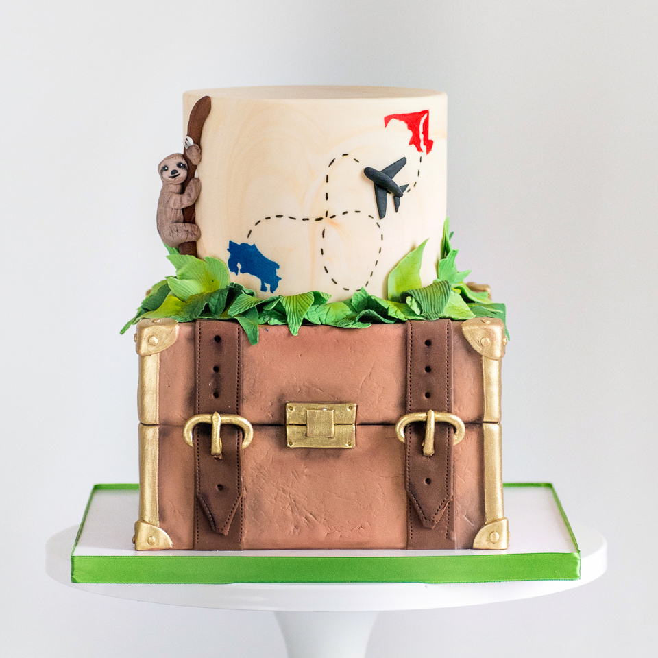 Suitcase going away cake
