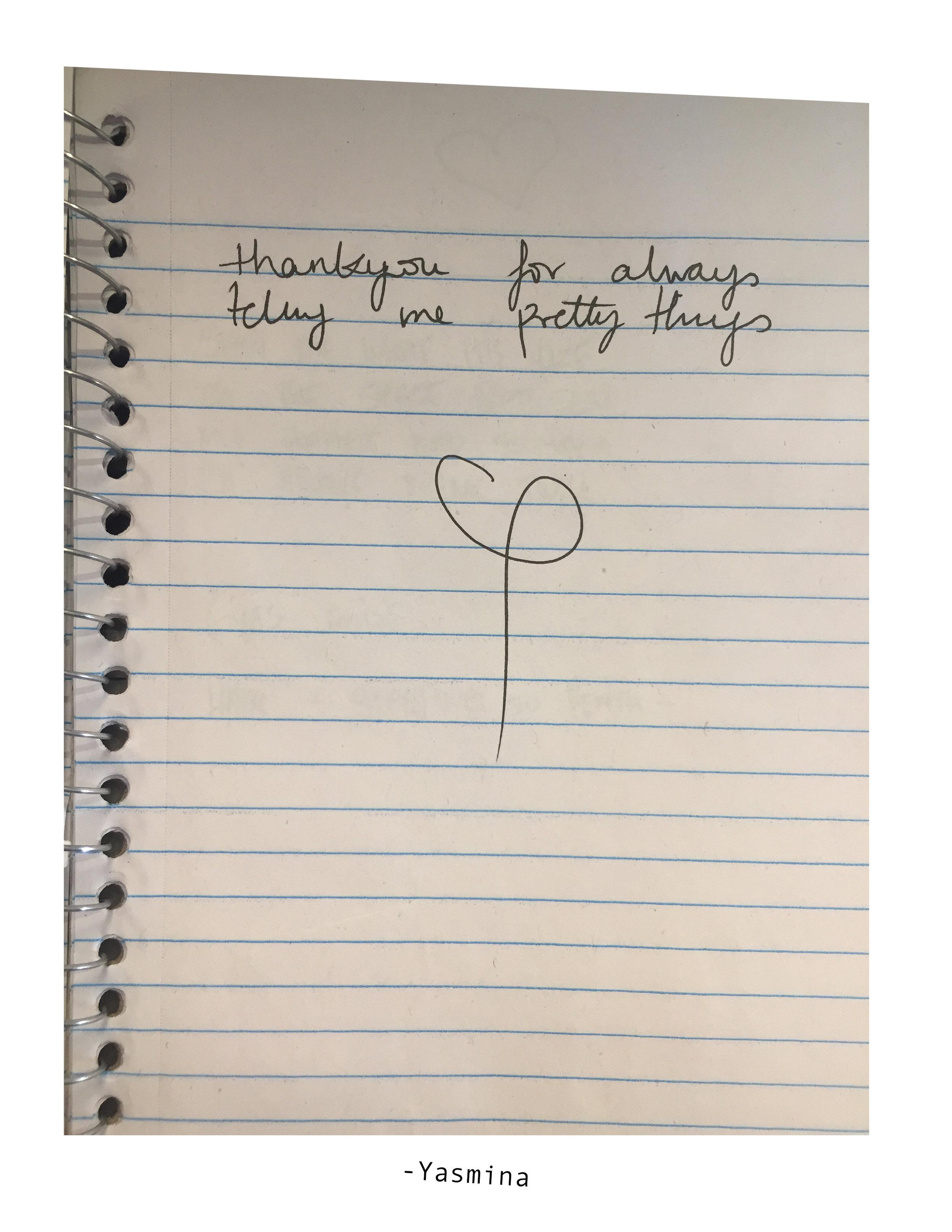 notes from Yasmina.jpg