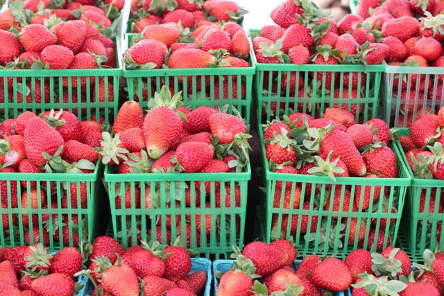 strawberries at market.jpg